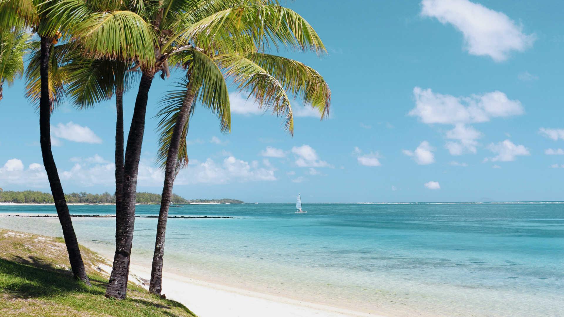 http://cegepsherbrooke.qc.ca/sites/default/files/field/image/solana-beach.jpg