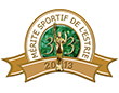 gala-merite-sportifs2013 70