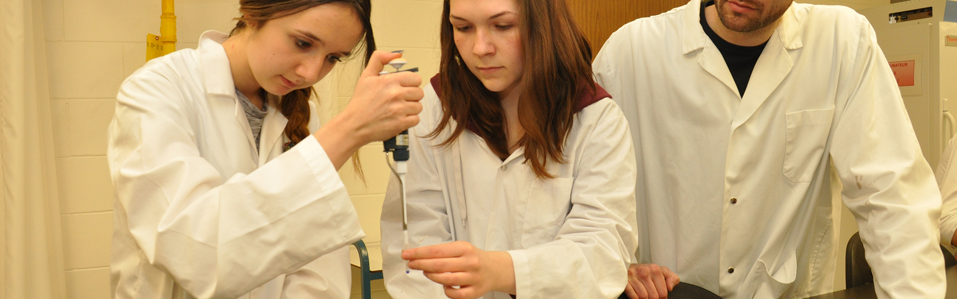Des étudiants explorent les sicences dans un laboratoire du programme Sciences, lettres et arts