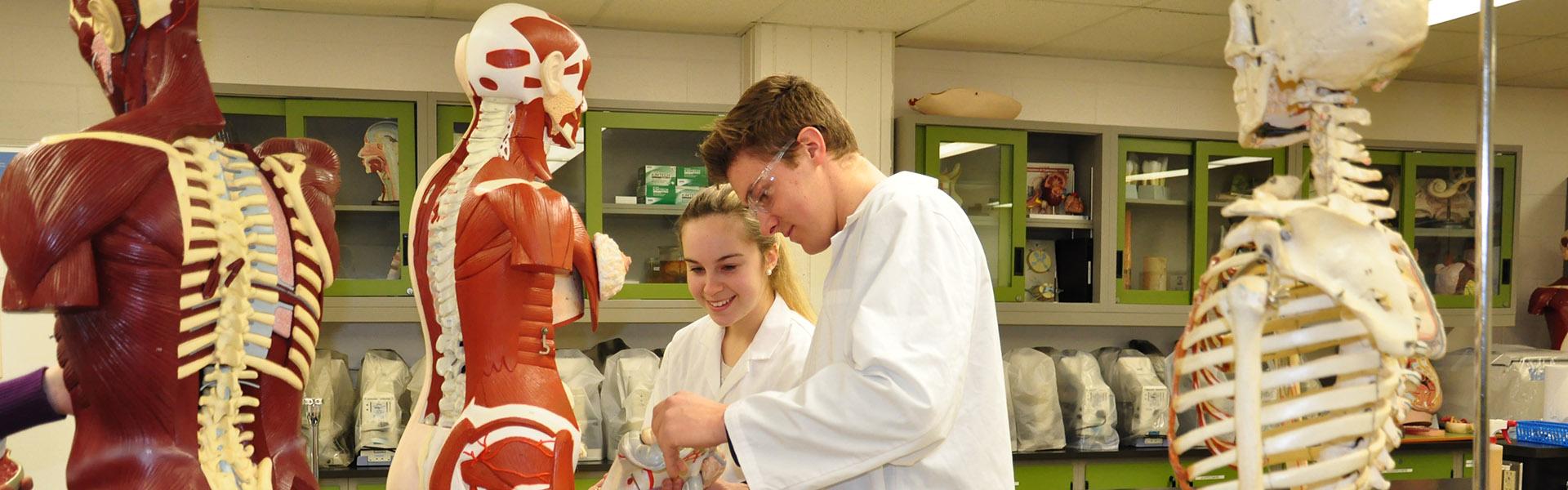 Vous aimeriez joindre des équipes de recherche et travailler avec des scientifiques de niveau professionnel? Choisissez le programme Sciences de la nature du Cégep de Sherbrooke.