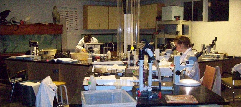 Laboratoire utilisé pour les analyses et identifications des échantillons marins