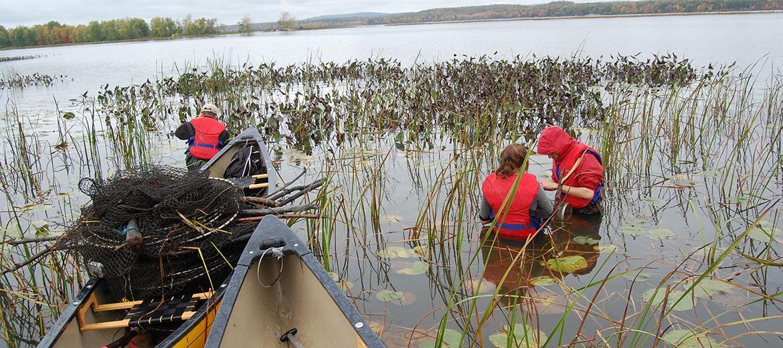 Utilisation de canots pour le transport de matériel